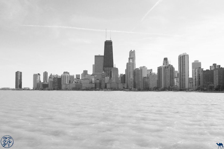 Le Chameau Bleu - Blog Voyage Chicago USA - Plage de Chicago North Avenue Beach