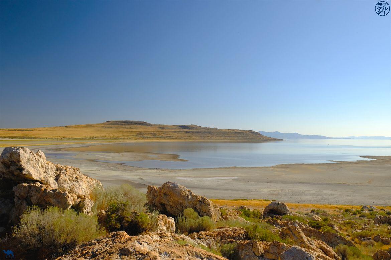 Le Chameau Bleu - Blog Voyage Utah - Lac à Antelope Island