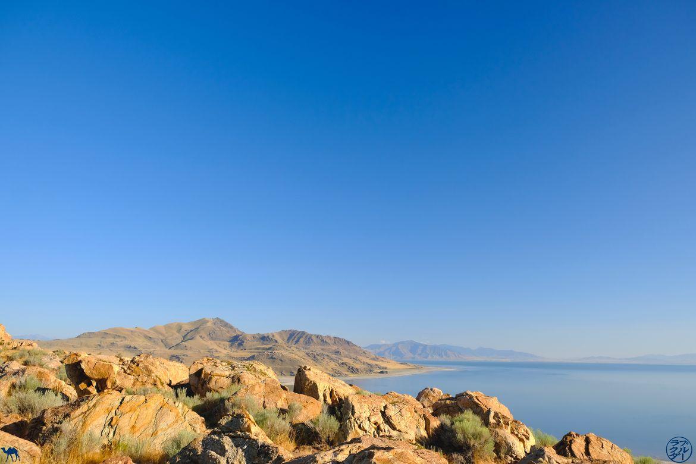 Le Chameau Bleu - Blog Voyage Utah - Vue de Antelope Island
