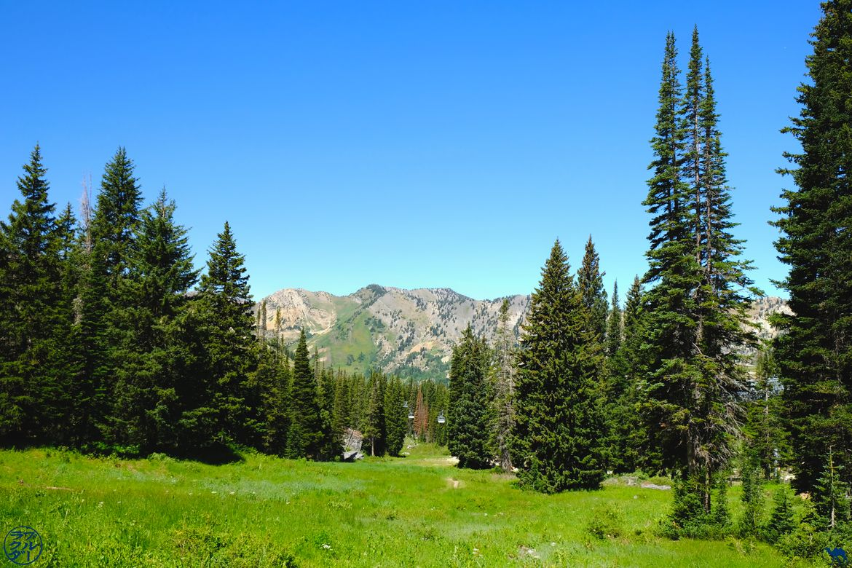 Le Chameau Bleu - Blog Voyage Utah USA - Randonnée à Cecret Lake