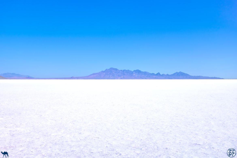 Le Chameau Bleu - Blog Voyage Utah - Desert de sel