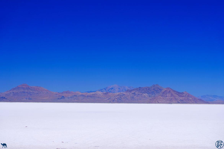 Le Chameau Bleu - Blog Voyage Utah - Lac de sel et Montagne à Bonneville Flats
