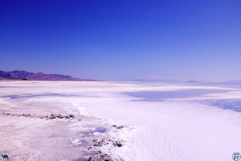 Le Chameau Bleu - Blog Voyage Utah Usa - Lac de sel à Rozel Point