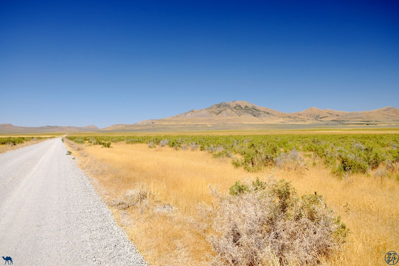 Le Chameau Bleu - Blog Voyage Utah - Route vers Spiral Jetty