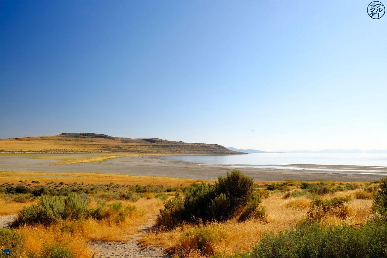 Le Chameau Bleu - Blog Voyage Utah - Berges de Salt Lake City a Antelope Park