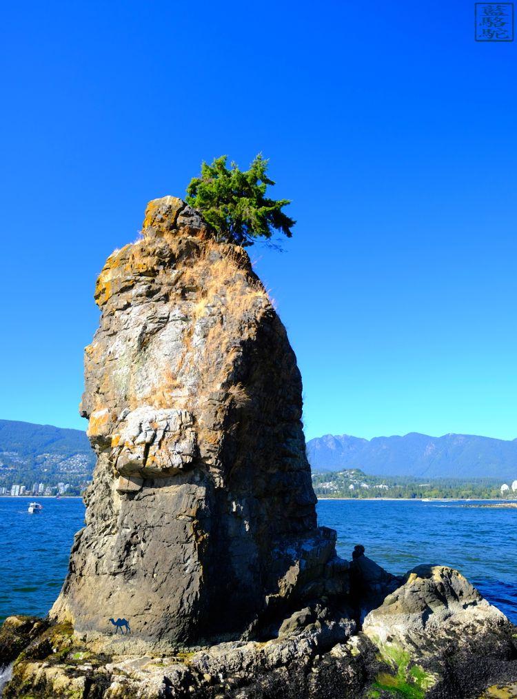 Le Chameau Bleu - Blog Voyage Vancouver Canada -Rocher de Stanley Park - Vancouver