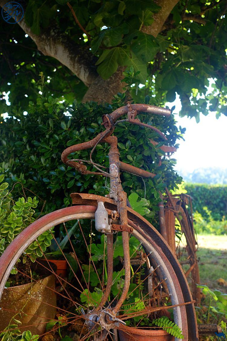 Le Chameau Bleu - Blog Voyage à vélo en Gironde - Maison d'hôte à Bourdelles