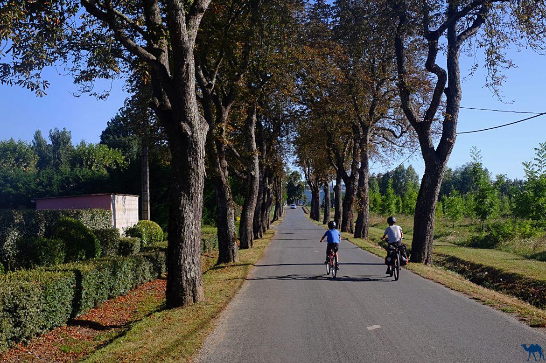 Le Chameau Bleu - Blog Voyage à vélo Canal des Deux mers - Sérignac sur Garonne - Département du Lot et Garonne