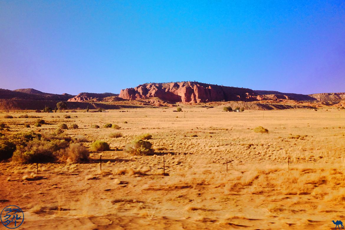 Le Chameau Bleu - Blog Voyage Chicago - Southwest Chief train - Paysage