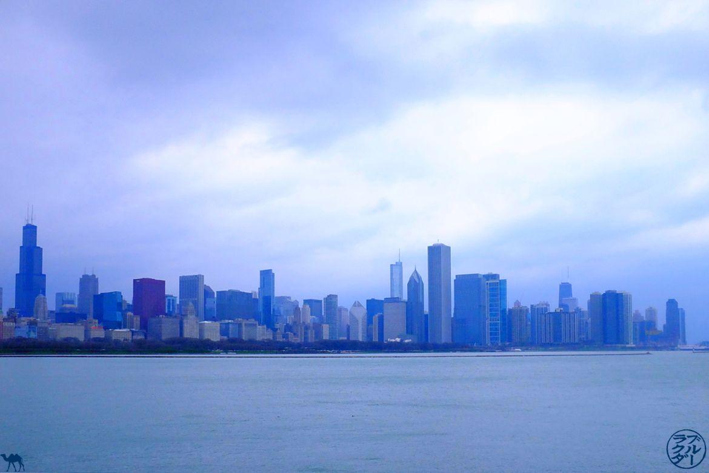 Le Chameau Bleu - Skyline depuis l'Adler Planetarium -Séjour à Chicago